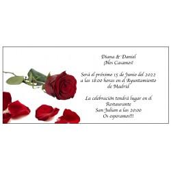 Graziosi inviti