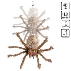 Ragno dai capelli castano-nero 60 x 45 x 10 cm