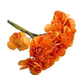 Piccolo fiore d'arancio